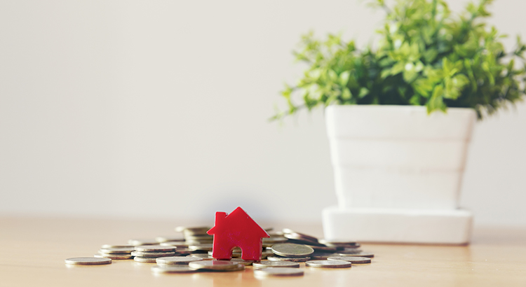 Close-Up Of Coins With Model Home And Plant On Table Against Wall